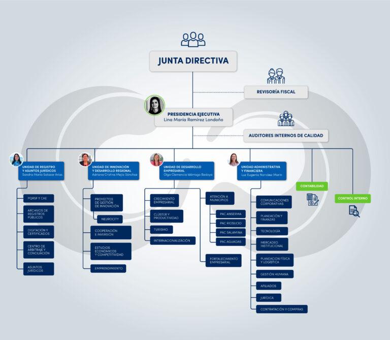 EstructuraOrganizacional